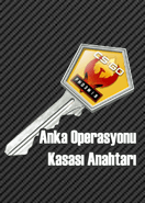 Anka Operasyonu Kasası Anahtarı